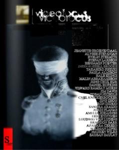 videofocus2013_cover